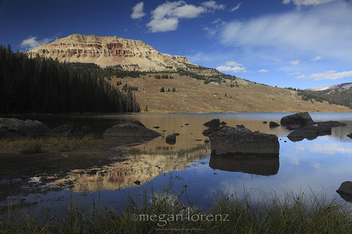 Shoshone Reflections by Megan Lorenz