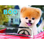 Boo: Little Dog in the Big City [Book]