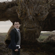 Q&A and Giveaway: A Monster Calls, Patrick Ness - Tea in the Treetops