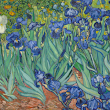 Getty Museum's Open Content project makes 4,600 pieces of art freely available to download