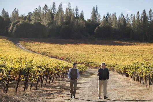 Lake County: Home of California's next great Cabernet?