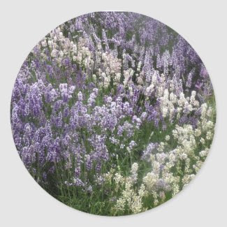 Relaxing Lavender Fields Sticker