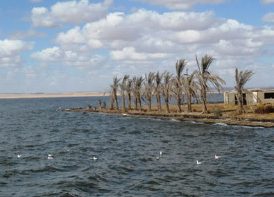 Lake Qarun is known for  its diverse bird life