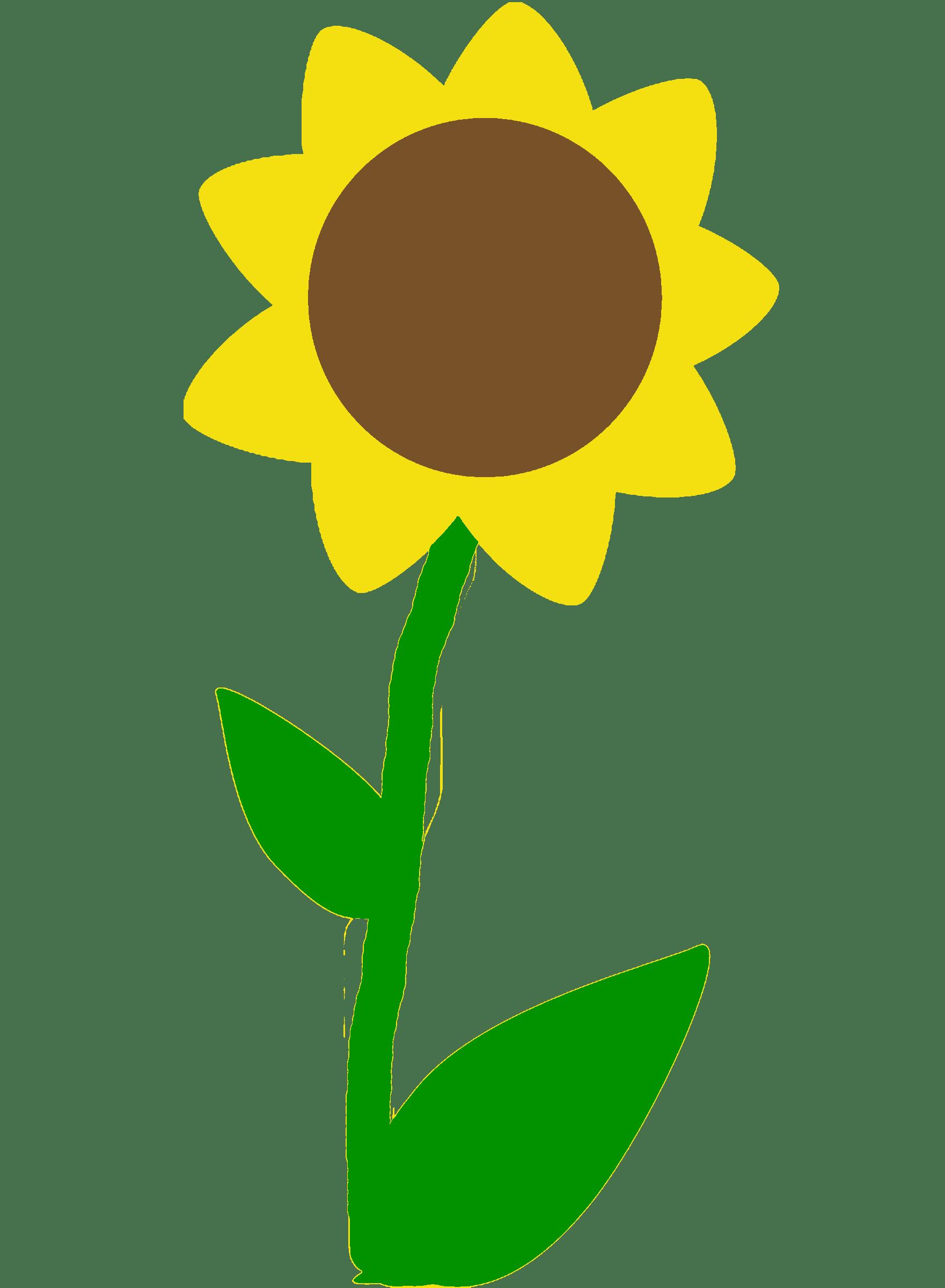 Dibujos De Flores La Belleza Se Encuentra En La Naturaleza