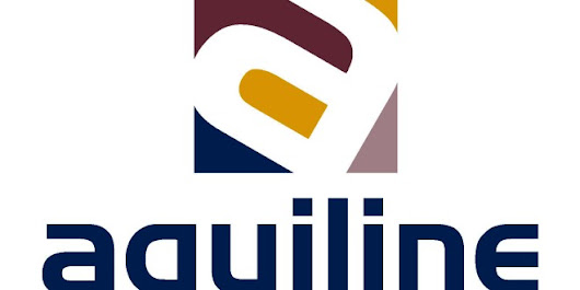 Aquiline For Projects And Contracts - EnMurcia.es