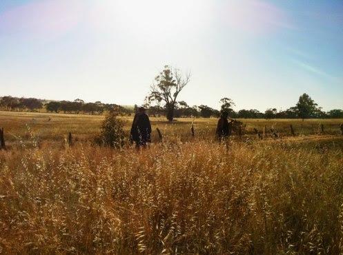 Walkking in the fields