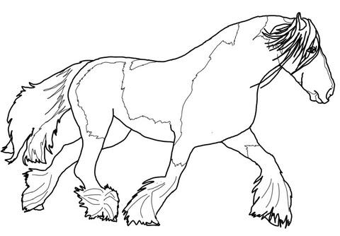 Ausmalbild Tinker Pferd Ausmalbilder Kostenlos Zum Ausdrucken