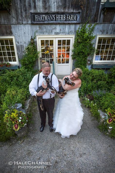 17 Best images about HaleChannel Wedding Photography on