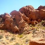 Sandstone forest