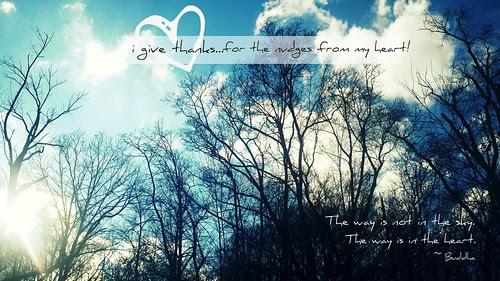 {Gratitude} Day 9 ~ Heart