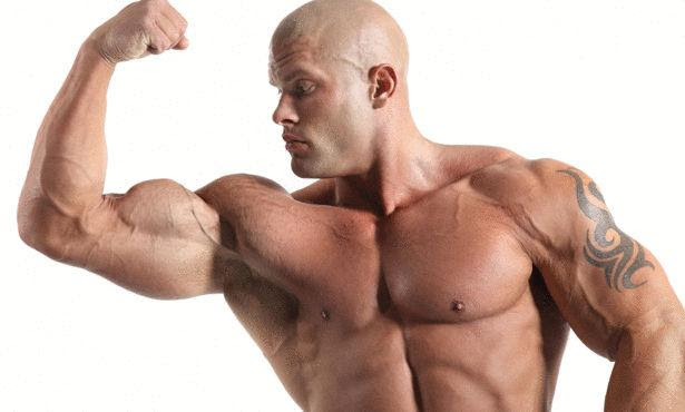 تضخيم-عضلات