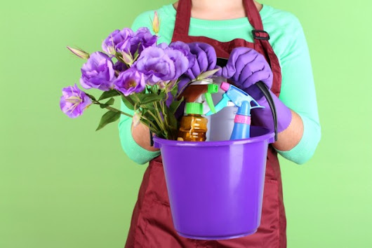 Spring Cleaning: The Neat Freak's Guide To Décor
