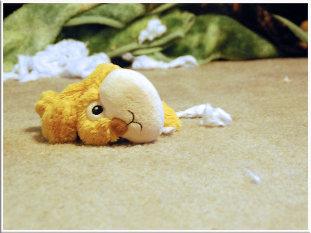 Poor-Destuffed-Stuffie