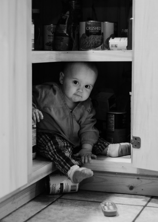 Caught in the Cupboard