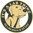Labrador Rescues Getting a Professional Touch of Love with Alana Joyner | Its a Lab Thing