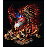 Pilot Automotive Freedom Eagle Decal GRP113