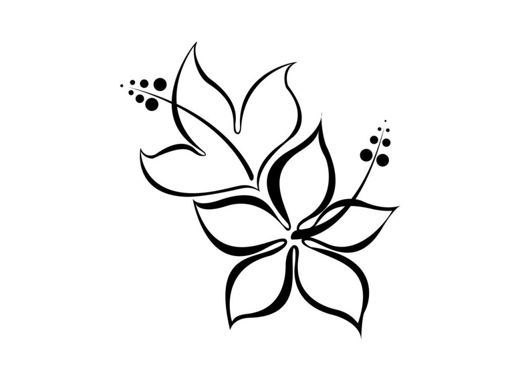 Beautiful Simple Flower Drawing Clip Art Library