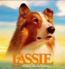 You're Lassie!