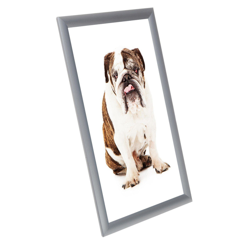 Silver Diploma Snapezo Snap Frame Poster Size 11x17 1 Inch