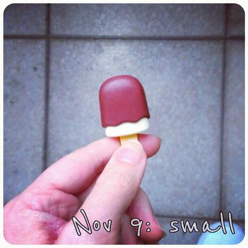 Nov 9: small #fmsphotoaday #icecream