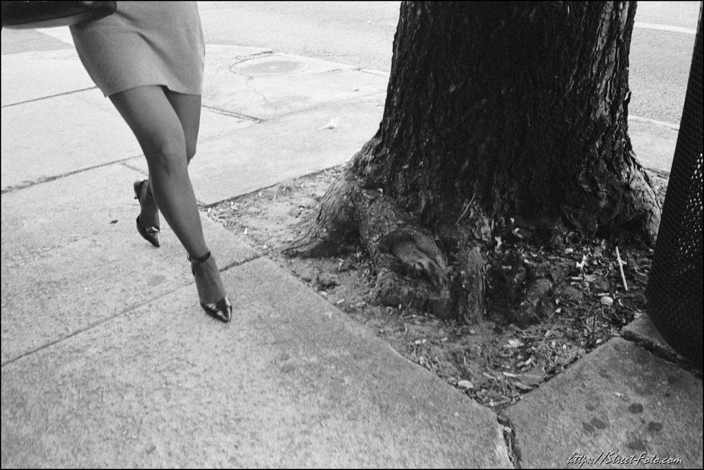 Legs and Tree Trunk
