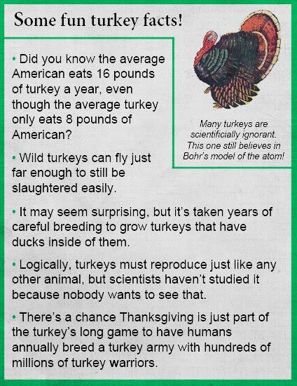 progressive charlestown  turkey facts