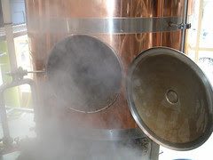 Steam from mash tun
