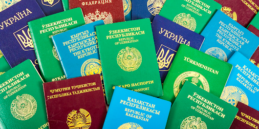 Why passports come in 4 standard colours