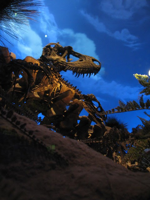 Bambiraptor and Gorgosaurus
