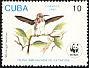 Bee Hummingbird Mellisuga helenae