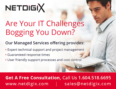 Why Choose An IT Service Provider? - Netdigix Systems Inc