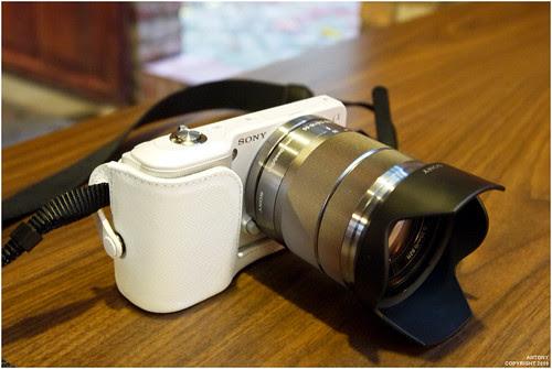 你拍攝的 P1000713。