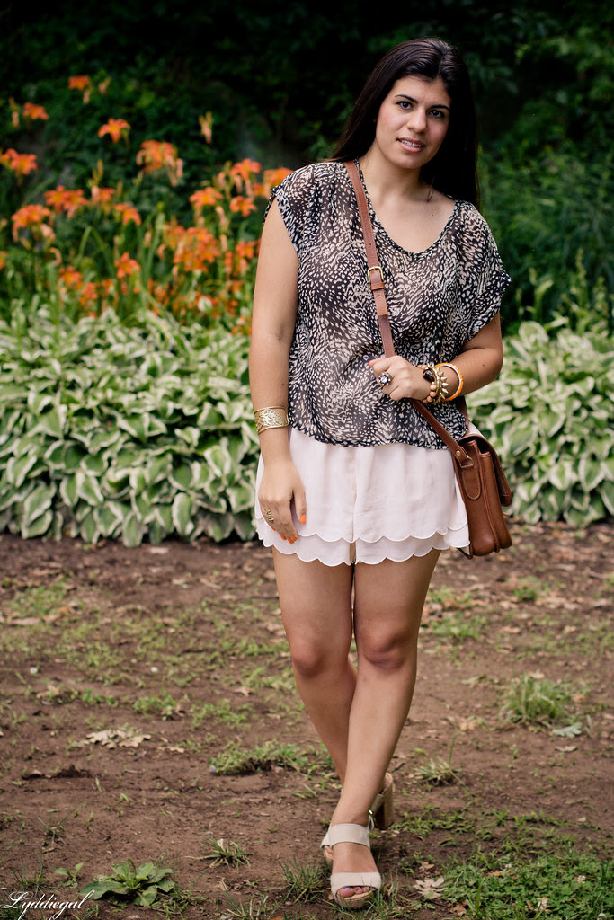 scalloped shorts and leopard-1.jpg