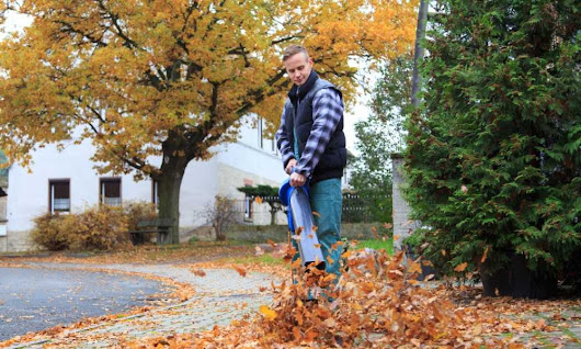 Stihl Leaf Blower: One of the Best Products on the Market