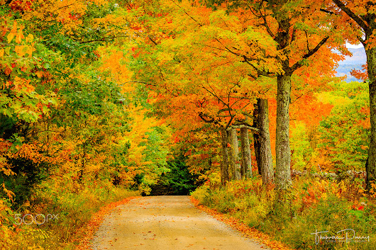 Autumn in New England - Photos by Thomas Parry / 500px