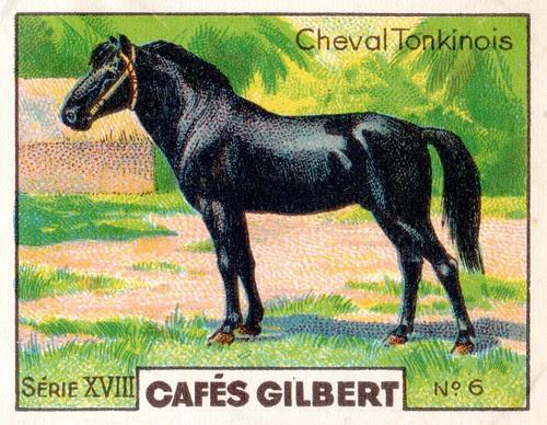 gilbert chevaux012