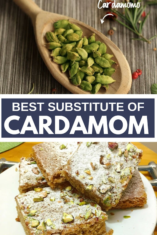 What Are the Best Cardamom Substitutes for Cooking | The Homemakers Journal