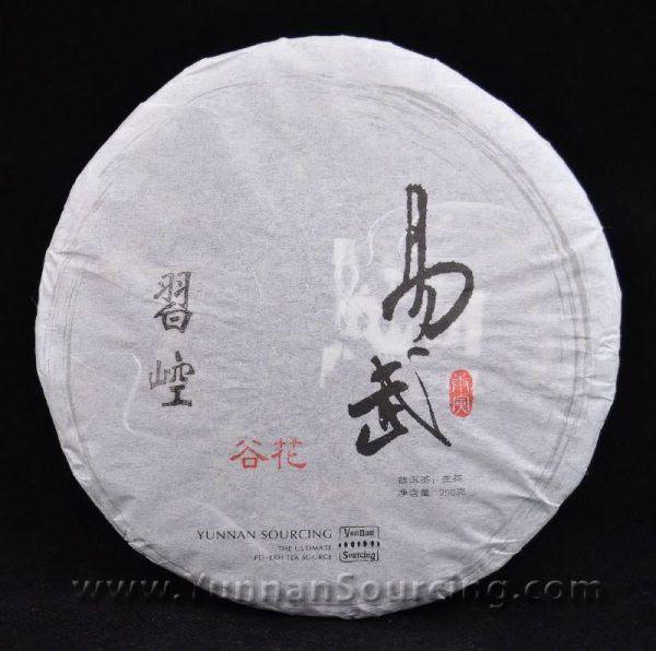 2010 Yunzhiyuan Xikong