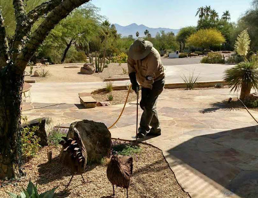Paradise Valley Tree, Shrub & Turf Fertilizer - Deep Root Fertilization