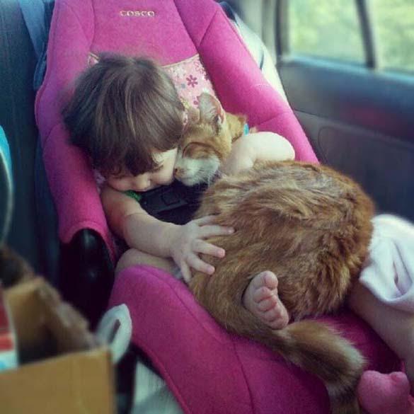Γάτες και μωρά (19)