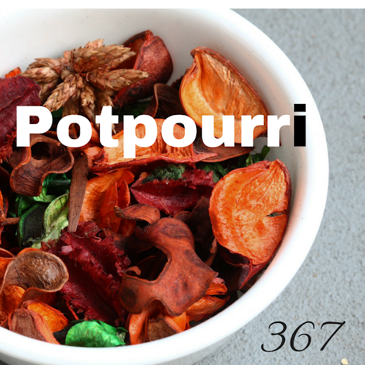 20 Questions Tuesday: 367 - Potpourri