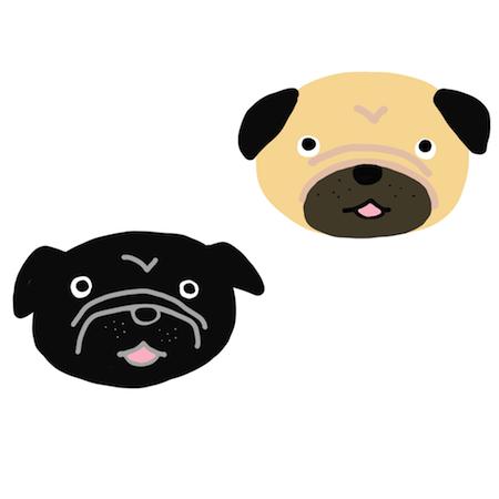 可愛い黒パグとフォーンパグの顔イラスト2匹