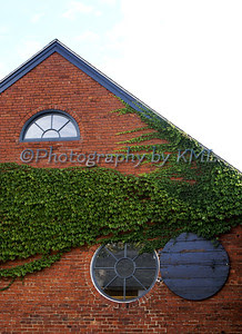green ivy on a brick building