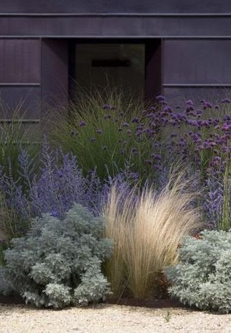 low water - grasses, mexican sage, succulents // Great Gardens & Ideas // - near front ditch so no-mow natural ball-catching fence!