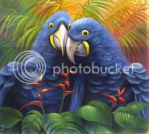 colorful parrots photo: tweeties 8-1.jpg