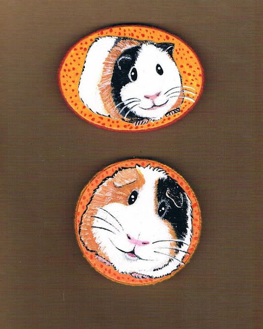 Hand Painted Guinea Pig Magnet Set Mixed Media by KimbasCritters