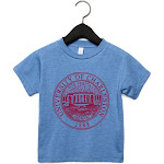 NCAA Charleston Golden Eagles PPCHA019, G.A.3001T, HBLU, 4T Size 4T HeatherBlue