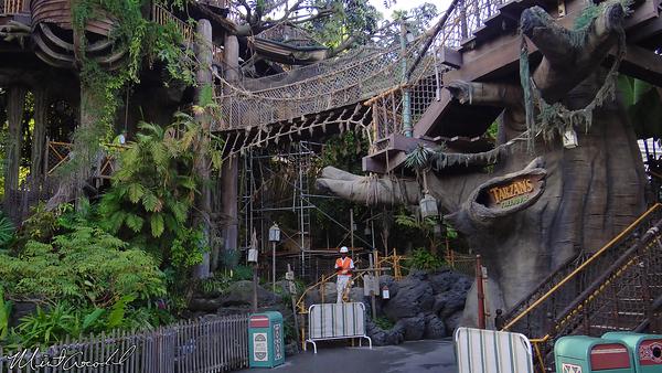 Disneyland Resort, Disneyland, Tarzan Treehouse, Refurbishment, Refurb