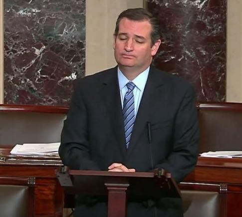 ted cruz trashes boehner on senate floor