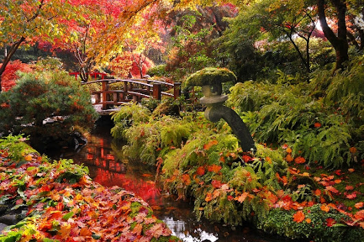 Saunter into Autumn at The Gardens
